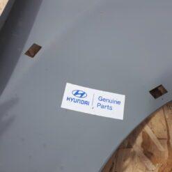 Крыло переднее левое Hyundai Tucson 2004-2010   663112E130 2